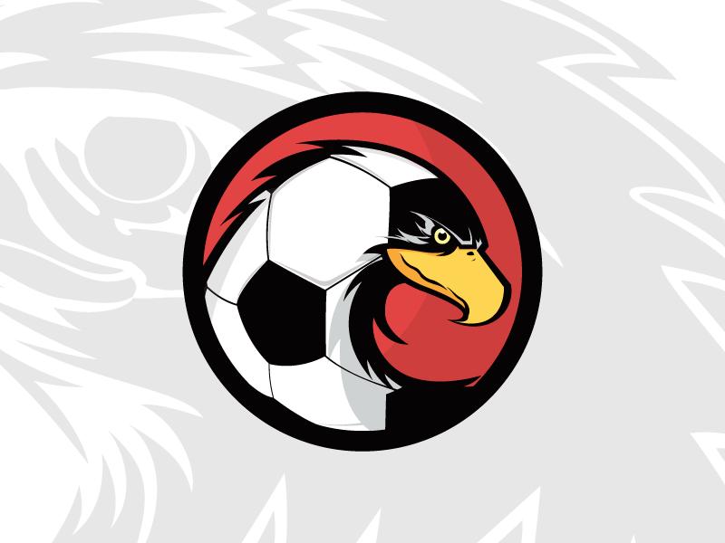 Thiết kế logo đội bóng hình đại bàng